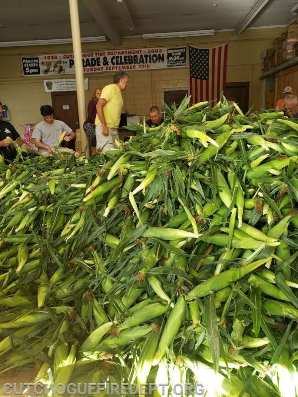 7000 ears of corn